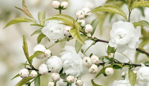yon-ka-spring-skincare-thumbnail